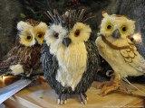 12 GIFTS OF CHRISTMAS: 3 OWLSA-HOOTIN'